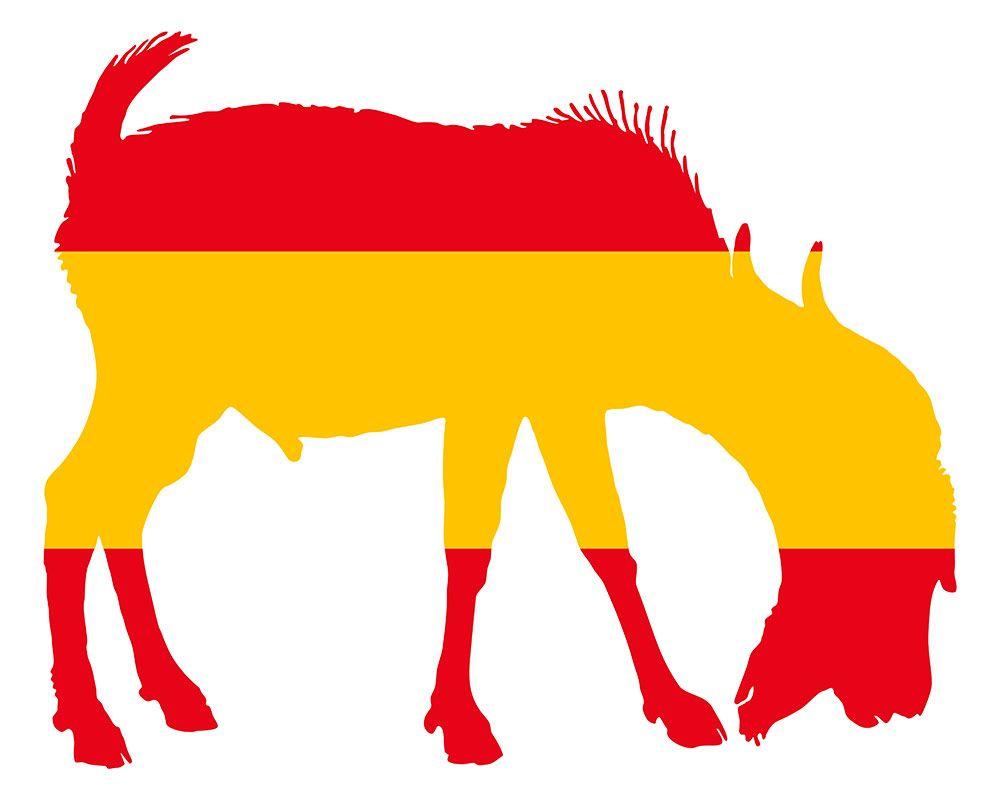 ganadería española