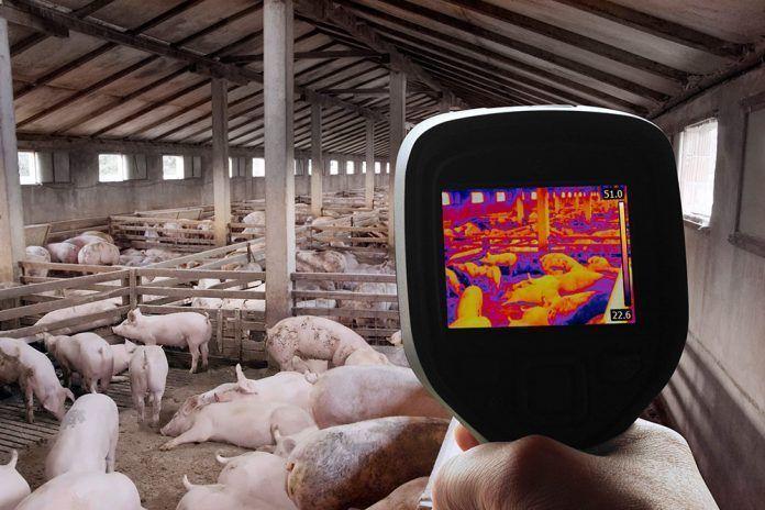 ganadería española industria insostenible cambio climático