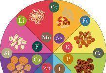 micronutrientes dieta vegana