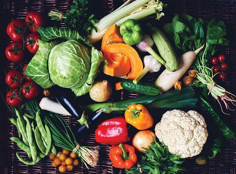 canadá dieta vegetal veganismo alimentación vegana bueno y vegano