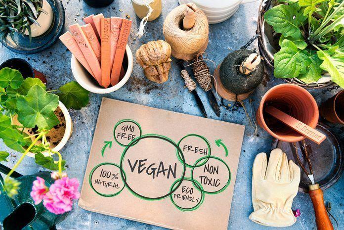 Alimentos que parecen veganos pero que no lo son La Comisión Europea registra la Iniciativa