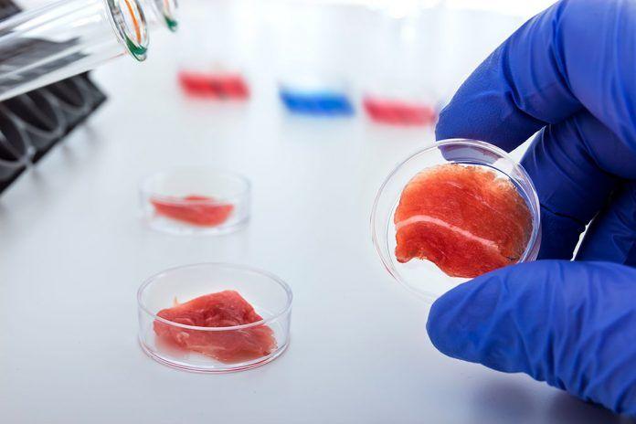 carne vegana de laboratorio volver a comer carne