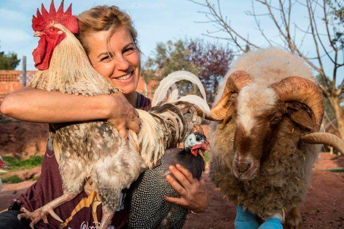 El Hogar Animal Sanctuary, pionero y ejemplo de amor