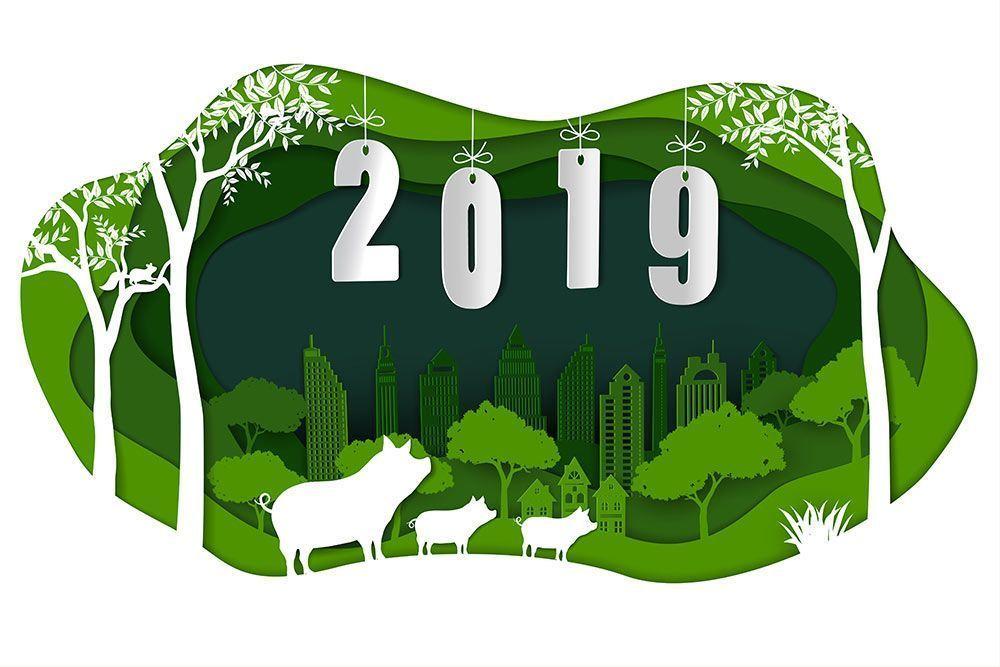 2019 Año nuevo, vida nueva!
