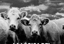 La lógica del vegetarianismo, un libro del siglo XIX lleno de actualidad