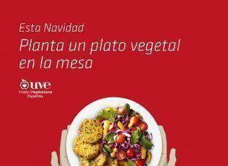 Esta Navidad, Planta un plato vegetal en la mesa