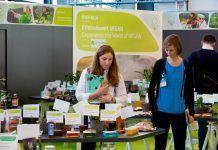 Veganismo en Alemania: El salto hacia la normalidad