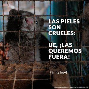 No al uso de las pieles de animales