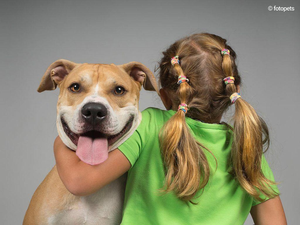 ¿Perros peligrosos?