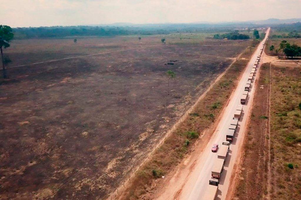 ¿Por qué arde el Amazonas?