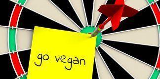 Be Veggie, el festival vegano