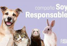 Soy Responsable, la campaña para identificar y esterilizar animales, ya en toda España