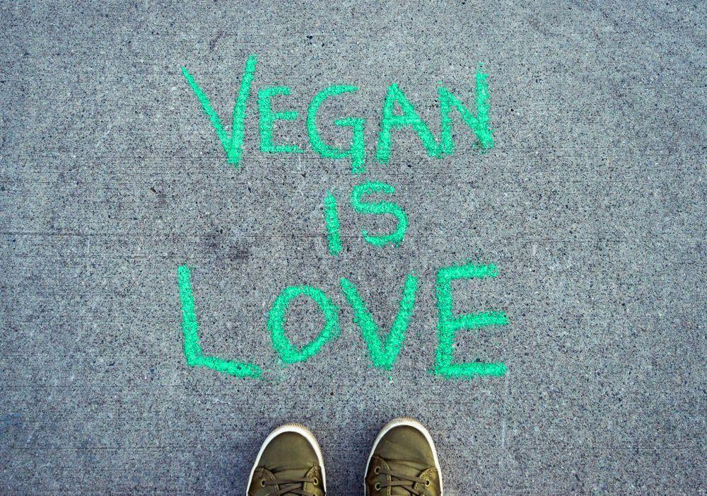 veganismo opinión general