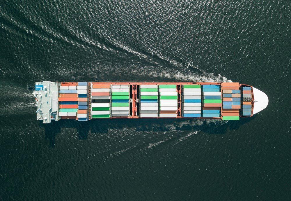 Miles de animales atrapados en barcos en el Canal de Suez