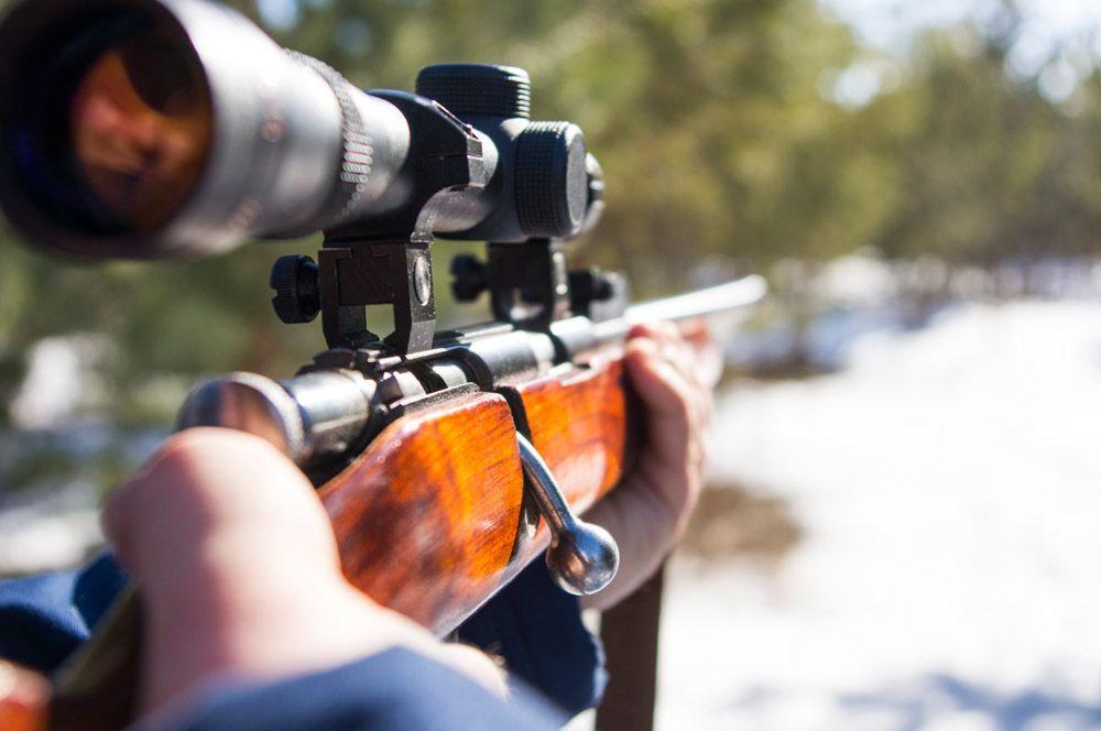 La caza, ¿un negocio intocable?